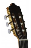Juan Álvarez, 1ª AV-2 - Guitarra Profesional Clásica
