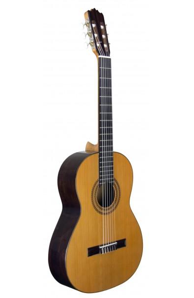 Guitarra Clásica Estudio 1 Tapa Maciza Juan Álvarez Y-4C