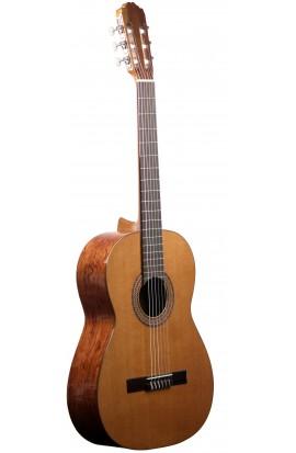 Guitarra Clásica Estudio 1 Tapa Maciza Raimundo 104B